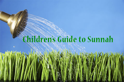 Childrens Guide to Sunnah